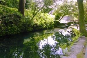 塩井社水源