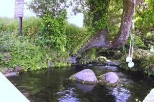 池の川水源