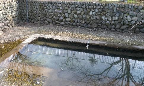 宮川清めの池