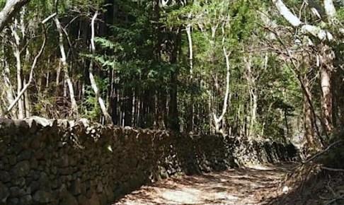 熊野古道伊勢路 荷坂峠道