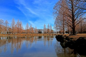 加須はなさき公園(加須はなさき水上公園)
