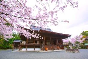 三井寺・金堂