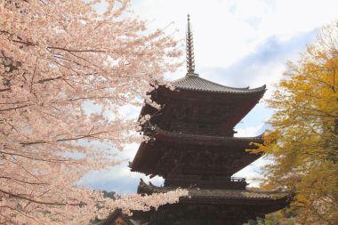 三井寺唐院・三重塔