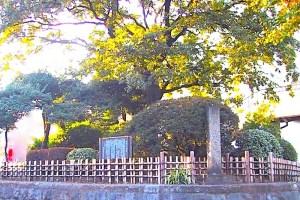 志村一里塚