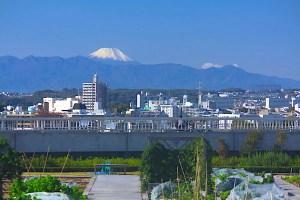 成城富士見橋