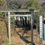 氷川神社富士塚(大松の富士塚)