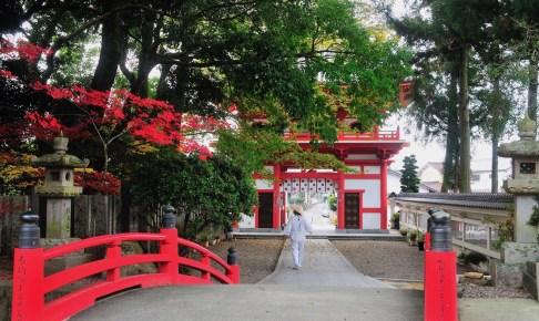 金泉寺(四国八十八ヶ所霊場第3番札所)