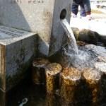 JA高岡佐野支店横の湧水