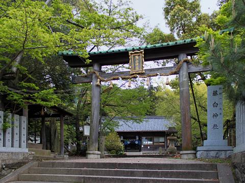 千年もの樹齢の楠木が境内一杯に覆い繁っている和歌山県海南市の藤白神社