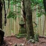 箸折峠(近露の宝塔)