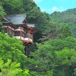 護国寺(唐松観音)
