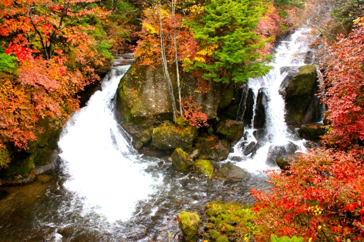 竜頭の滝・紅葉