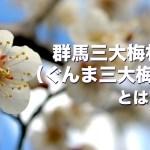 群馬三大梅林(ぐんま三大梅林)