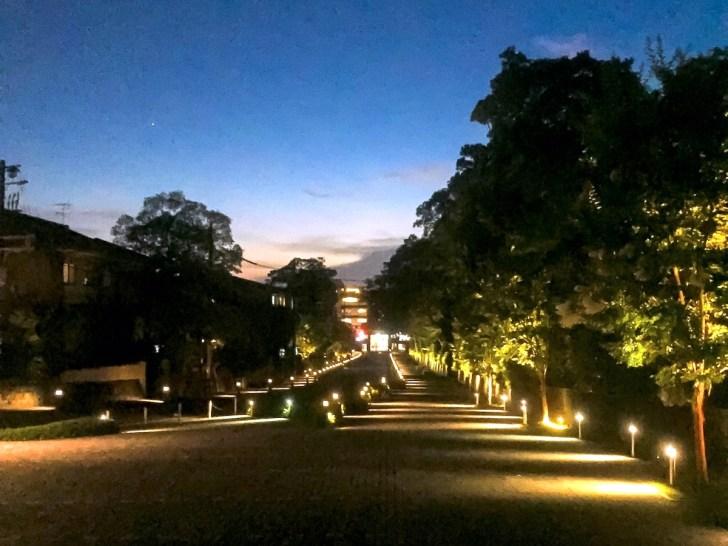 知恩院春のライトアップ