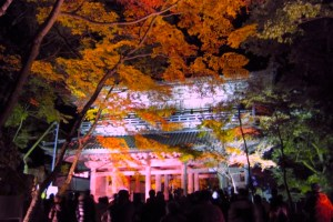 永源寺『紅葉ライトアップ・夜間特別拝観』