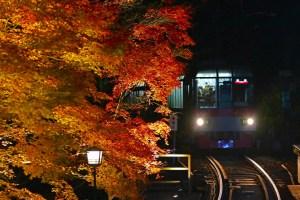 叡山電車鞍馬線『もみじのトンネルライトアップ』