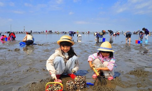 富津海岸潮干狩