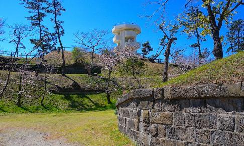 富津元洲堡塁砲台