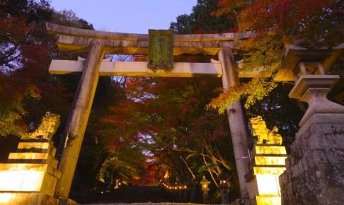 胡宮神社・大瀧神社『神あかり』(紅葉ライトアップ)
