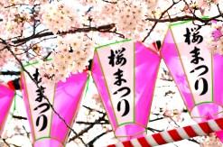 隅田公園・桜