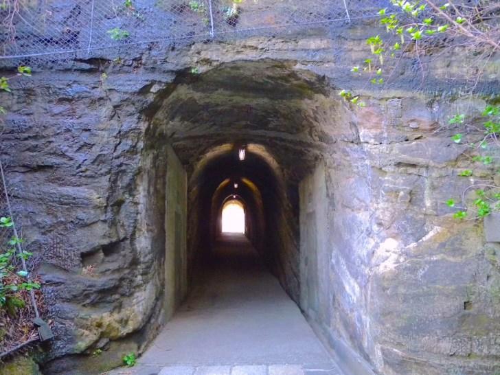 観音崎公園の素掘りトンネル