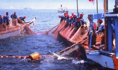 鞆の浦観光鯛網