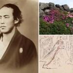日本初の新婚旅行