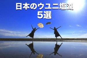 日本のウユニ塩湖 5選