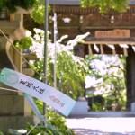 八坂神社・夏越の大祓