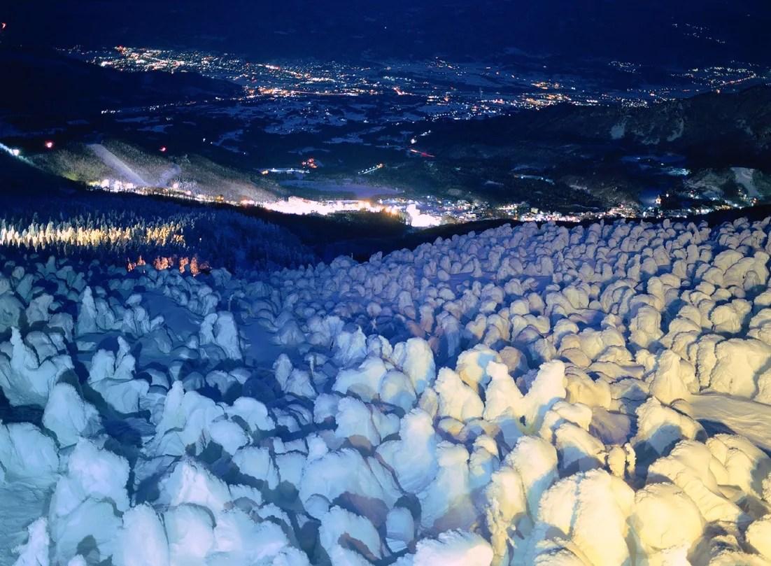 蔵王ロープウェイ『樹氷ライトアップ』