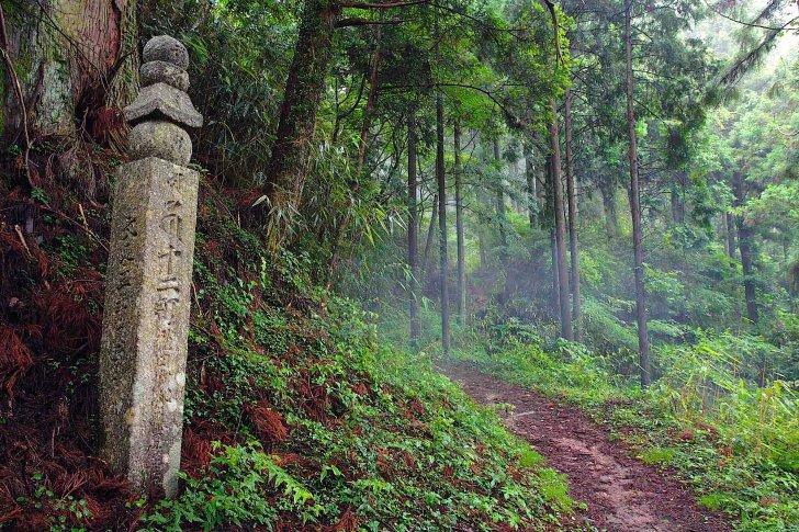 高野山に配流の真田昌幸・信繁親子も歩いた「高野山町石道」