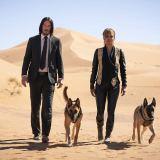 犬と馬大活躍『ジョン・ウィック:パラベラム』