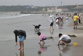 大洗海岸第2サンビーチ