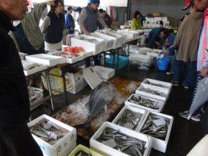 熱海魚市場 魚祭り