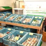 鳥取駅前食品市場