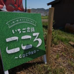 いちご農園COCORO