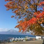 支笏湖・丸駒温泉・サケのふるさと千歳水族館を巡るバスツアー