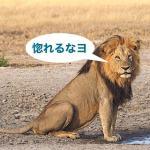 チョベ国立公園、ドラマなサファリ旅行記5-6日め【アフリカ】