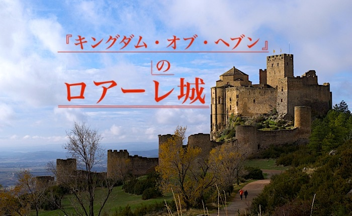 ロアーレ城の全景画像