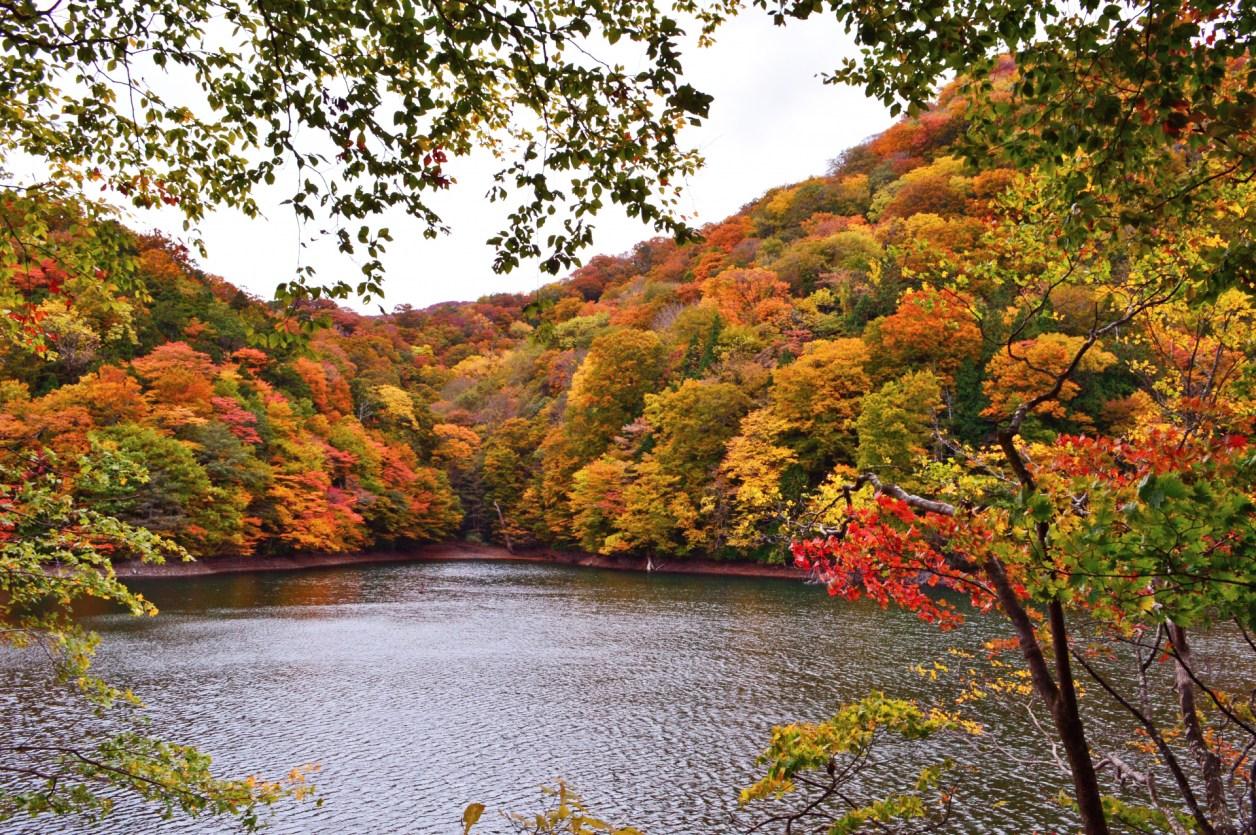 十二湖 紅葉