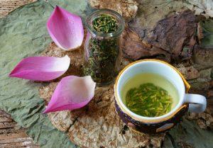 lotus tea