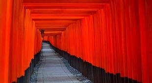 kyoto-image