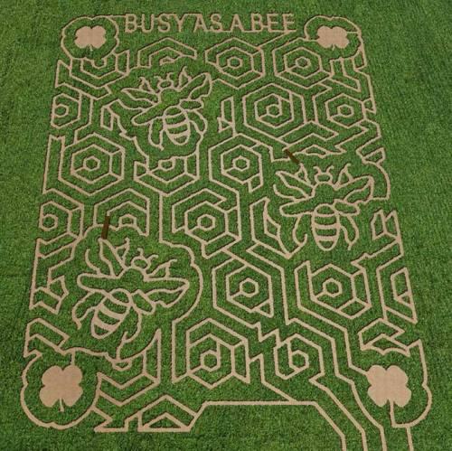 corn-maze-map