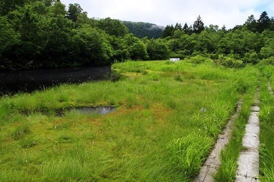 20160417-681-12-aomori-city-kanko