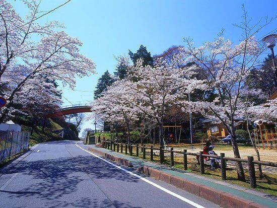 20160426-691-26-iwaki-city-kanko