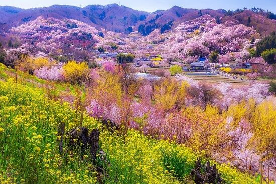 20160519-708-44-fukushima-shi-kanko