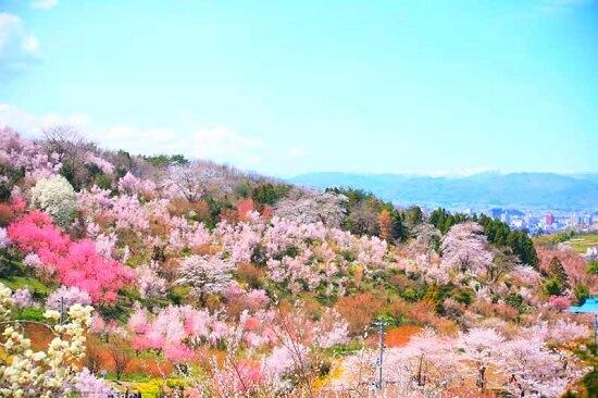 20160519-708-45-fukushima-shi-kanko