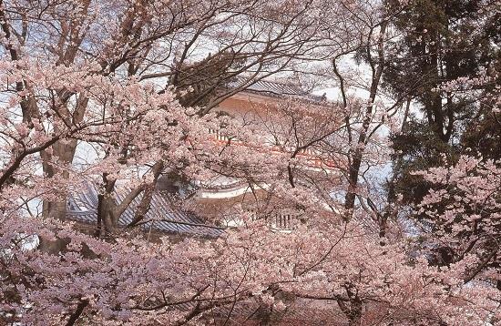 20160524-710-15-akita-shi-kanko