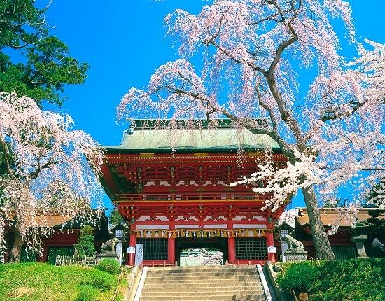 20160527-713-5-shiogama-kanko