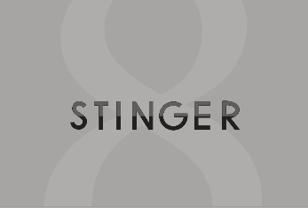 STINGER8で関連記事にインフィード広告を挿入する方法